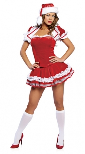 Santa's Maid Christmas Costume