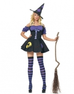 Plus Size Moonlight Witch Halloween Costume