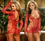 Red Lace Mesh Teddy