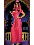 Rose Teen Genie May K Wish Costume