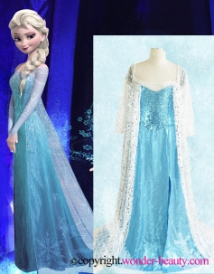 Lovely Frozen Queen Elsa Costume From The Movie