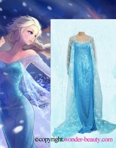 Snow Queen Elsa In Frozen Cosplay Costume